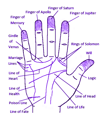 Featured Information on Palmistry
